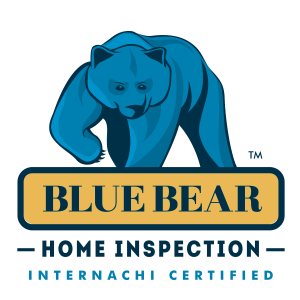 Blue Bear 2016 Logo